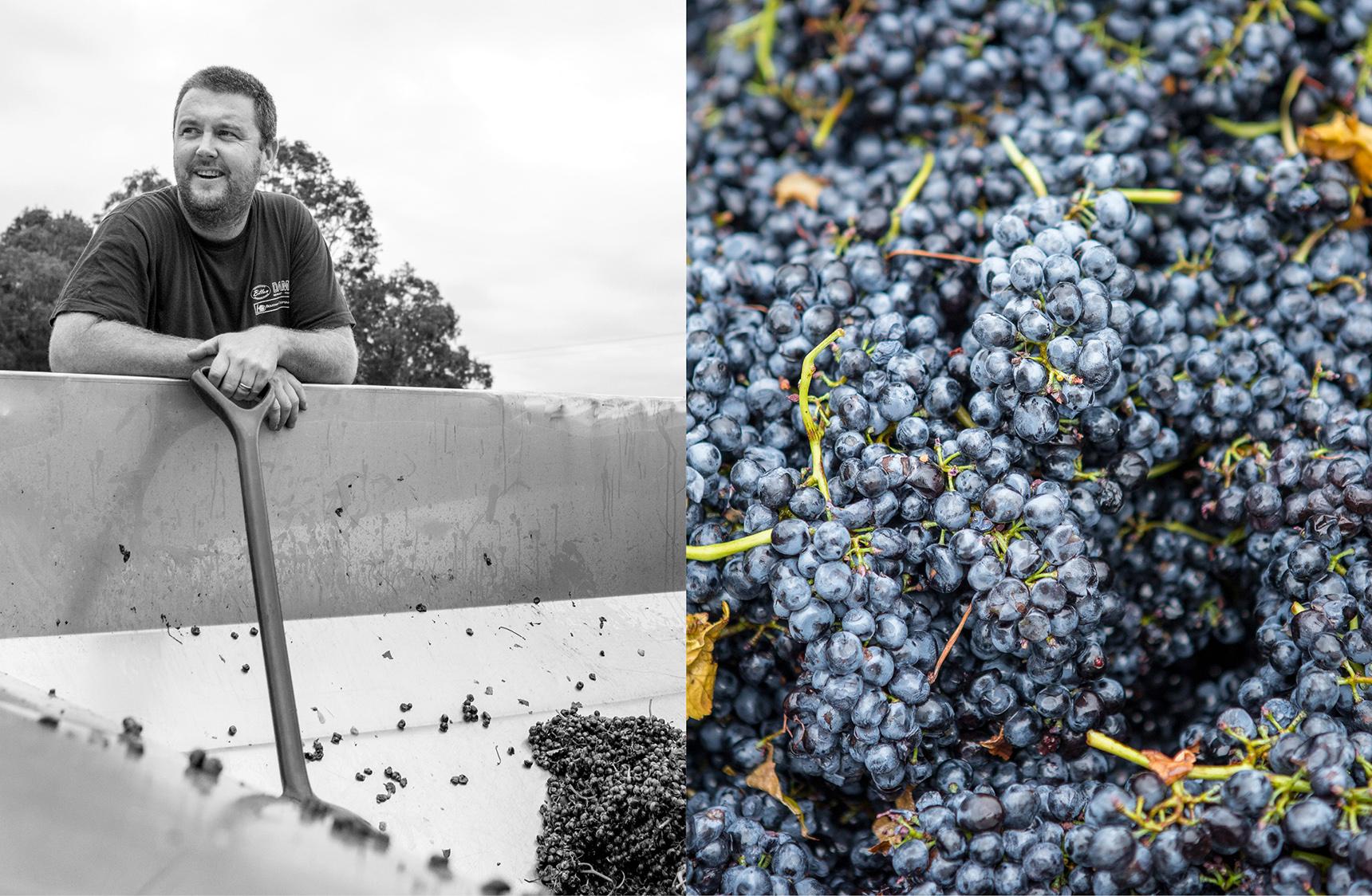 mjk_horner-wines_06