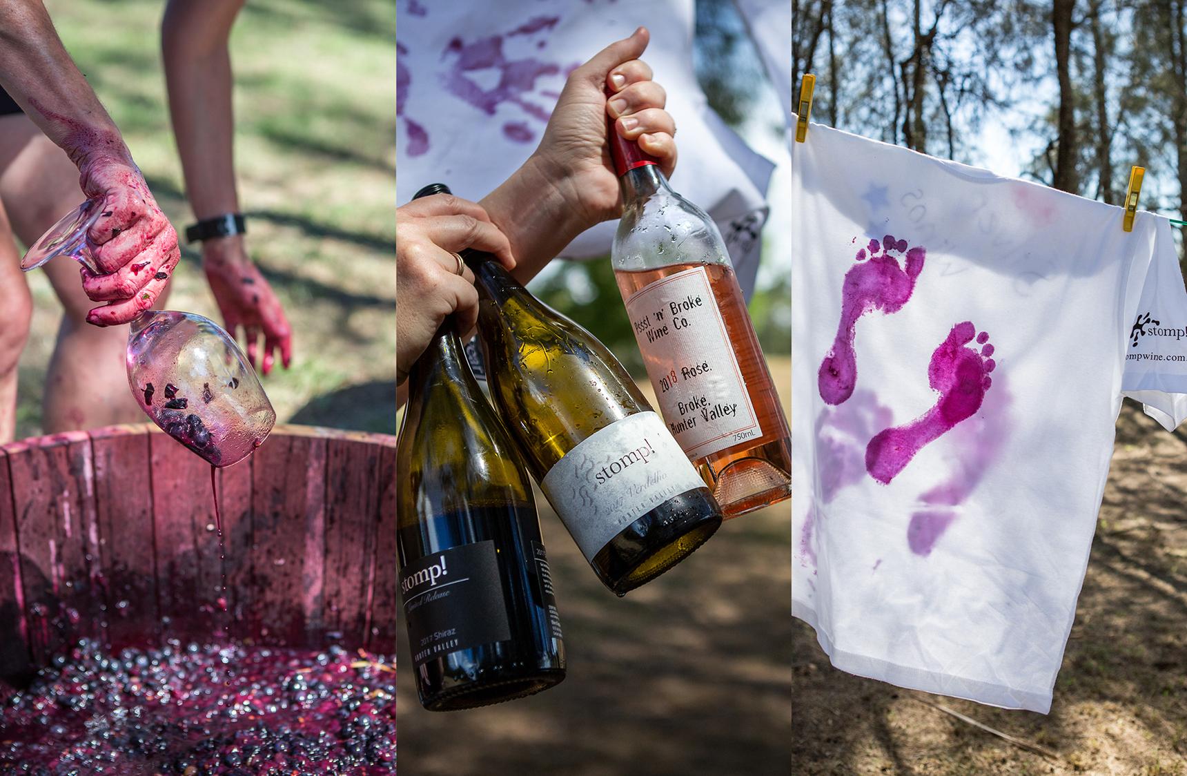 mjk_stomp-wines_04