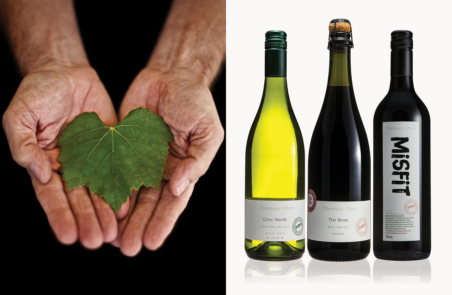 mjk_thomas-allen-wines_05